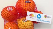 Il sacchetto con i cinque agrumi Dop e Igv che il distretto agrumi di Sicilia presenterà all'Expo gate