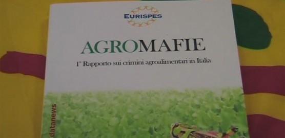 Agromafie-Rapporto-Coldiretti--556x270
