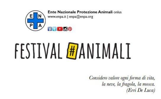 Festival#Animali