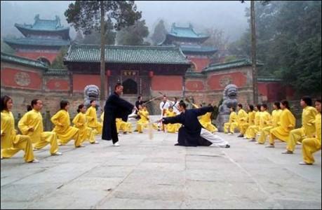 L'arte del kung fu
