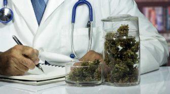 cannabis terapeutica medicomm