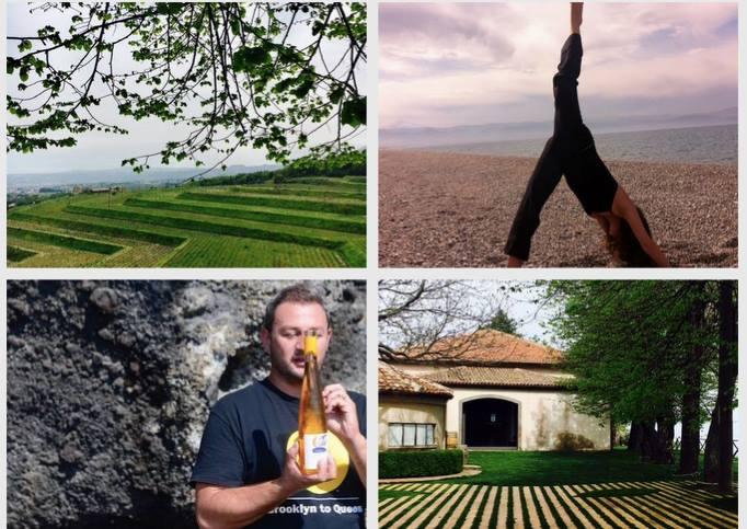 yoga e vino taste al barone di villagrande