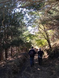 percorso Schiena dell'asino Etna (foto di Alessandro Caristia)